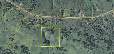 Residential Lots & Land For Sale: John Lee Avenue