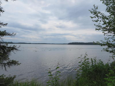 Soldotna Residential Lots & Land For Sale: Lot 6 Lakefront Drive