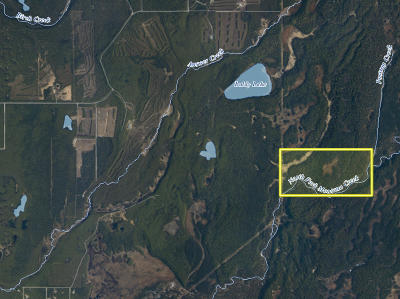 Talkeetna Residential Lots & Land For Sale: D001 No Road