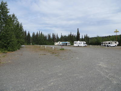 Soldotna Residential Lots & Land For Sale: 210 Marydale Drive
