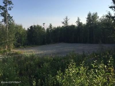 Wasilla Residential Lots & Land For Sale: 2742 Avalon Circle
