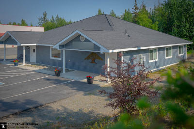 Wasilla Single Family Home For Sale: 5730 E Pilgrim Court