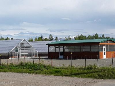 Wasilla Business Opportunity For Sale: 4985 W Fairview Loop