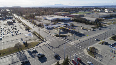 Anchorage Commercial For Sale: 1501 W Northern Lights Boulevard