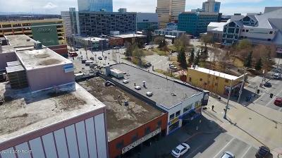 Anchorage Commercial For Sale: 507 E Street