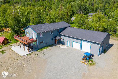 Wasilla Single Family Home For Sale: 1000 E Tyee Drive