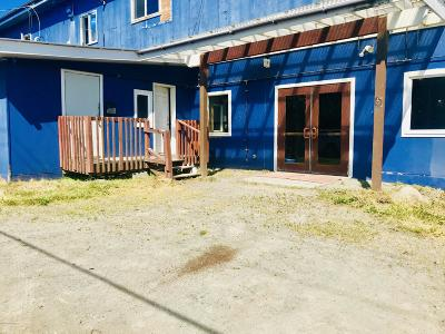 Homer Commercial For Sale: 397 E Pioneer Avenue