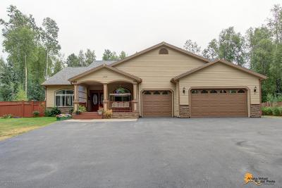 Wasilla Single Family Home For Sale: 938 E Ashwood Loop