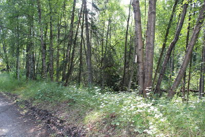 Anchorage Residential Lots & Land For Sale: 4955 24th Avenue
