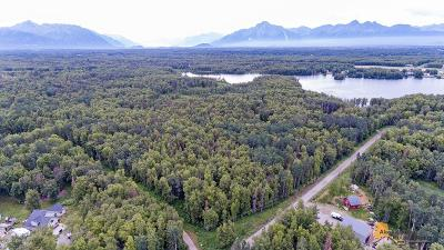 1D - Matanuska Susitna Borough Residential Lots & Land For Sale: 5849& 5901 Steen Road