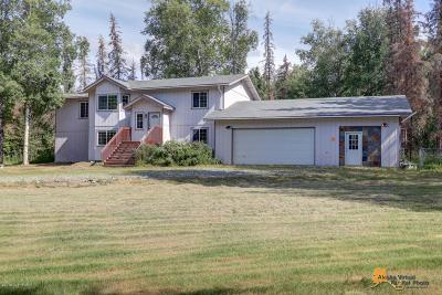 Wasilla Single Family Home For Sale: 3941 S Birchcove Drive