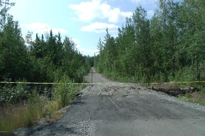 Wasilla Residential Lots & Land For Sale: 6490 Trevett Circle