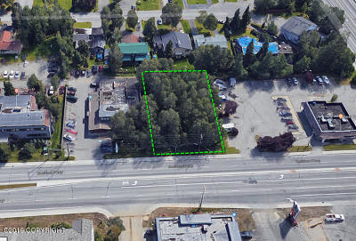 Anchorage Residential Lots & Land For Sale: Boniface Parkway