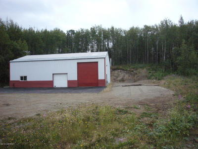 Wasilla Commercial For Sale: 9300 W Business Park Drive