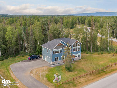 Wasilla Single Family Home For Sale: 7028 S Hayfield Road