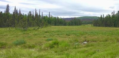 Talkeetna Residential Lots & Land For Sale: Tr D No Road