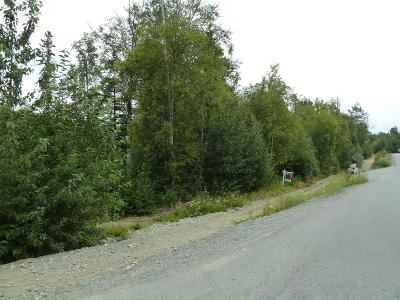 Wasilla Residential Lots & Land For Sale: Lt1 Aspen Ridge Estates Ph 1 BL 2