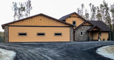 Wasilla Single Family Home For Sale: 9702 W Aircraft Court