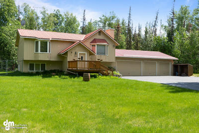 Wasilla Single Family Home For Sale: 3921 S Birch Cove Drive