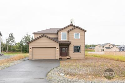 Wasilla Single Family Home For Sale: 2169 S Withers Road