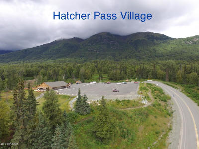 Palmer Residential Lots & Land For Sale: 10210 Mountain Trails Drive