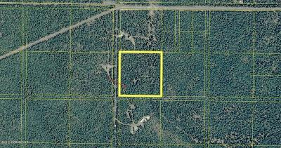 Soldotna Residential Lots & Land For Sale: TR 8 Royce Street