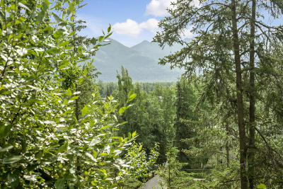 Anchorage Residential Lots & Land For Sale: 341 Melody Place