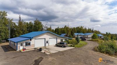 Wasilla Commercial For Sale: 2901 S Silver Wings Circle