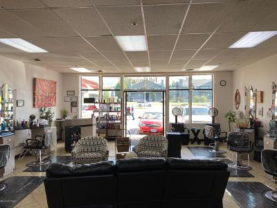 Anchorage Commercial For Sale: 9900 Old Seward Highway #6