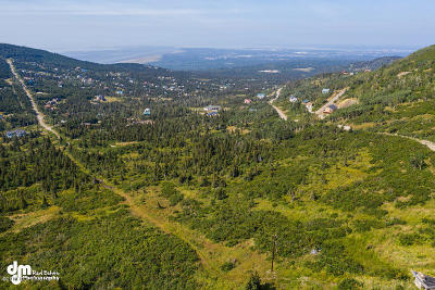 Anchorage Residential Lots & Land For Sale: 9295 Paine Road