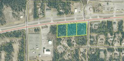 Soldotna Residential Lots & Land For Sale: LA1-A3 Sterling Highway