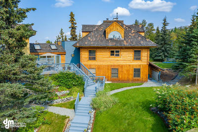 Anchorage Single Family Home For Sale: 9231 Atelier Drive