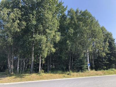 Kenai Residential Lots & Land For Sale: 1126 First Street
