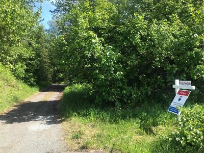 Anchorage Residential Lots & Land For Sale: L1-L3 B2 Skylark Avenue