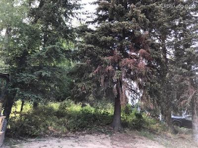 Anchorage Residential Lots & Land For Sale: 6960 Crawford Street