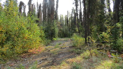 Willow Residential Lots & Land For Sale: 14091 Iditarod Circle