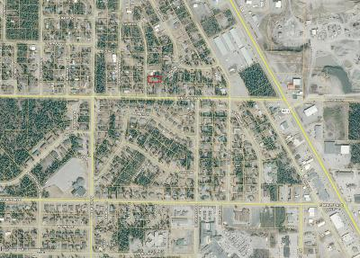 Soldotna Residential Lots & Land For Sale: L5 B3 Irons