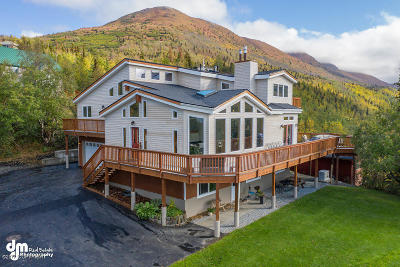 1a - Anchorage Municipality Single Family Home For Sale: 19424 Upper Skyline Drive