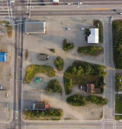 Wasilla Commercial For Sale: 391 E Parks Highway