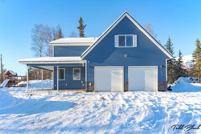 Wasilla Single Family Home For Sale: 6399 E Brainard Circle