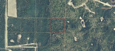 Soldotna Residential Lots & Land For Sale: L4 Goodyear Avenue