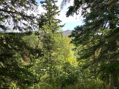 Anchorage Residential Lots & Land For Sale: L29 B4 Portugal Circle