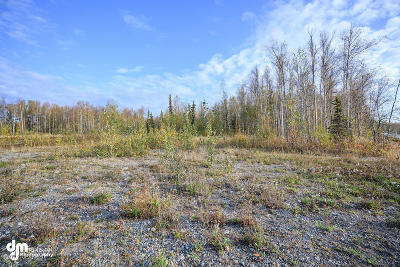 Wasilla Residential Lots & Land For Sale: 4650 Woods Avenue