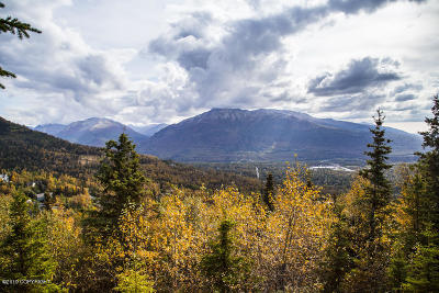 Eagle River Residential Lots & Land For Sale: 19221 Timberline Drive