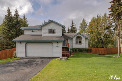 1a - Anchorage Municipality Single Family Home For Sale: 19222 S Mitkof Loop