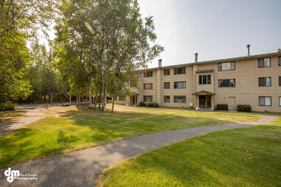 Anchorage Condo/Townhouse For Sale: 355 Donna Drive #6