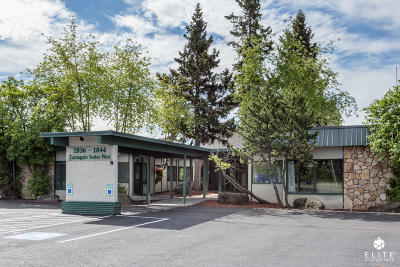 Anchorage Commercial For Sale: 1836 W Northern Lights Boulevard