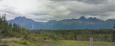 Wasilla Residential Lots & Land For Sale: 465 Wilderness Drive