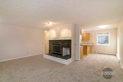 Anchorage Condo/Townhouse For Sale: 1461 Northview Drive #I-1