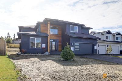 Anchorage Single Family Home For Sale: L43 B3 Morgan Loop